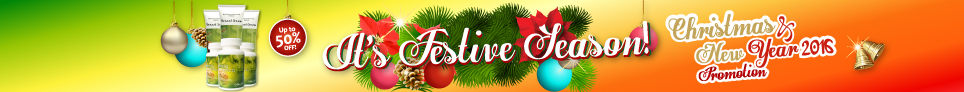 Christmas and New Year 2016 Promotion It's Festive Season! Up to 50% OFF!